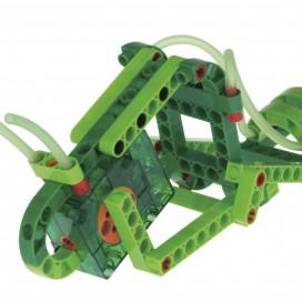 620365_geckobot_model1.jpg