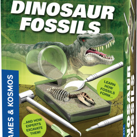 630416_dinosaurfossils_3dbox.jpg